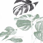 Botanica illustratie